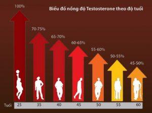 bieu-do-testosterone-nam