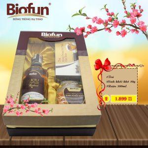 qua-tet-2018-biofun2