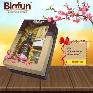 qua-tet-2018-biofun4